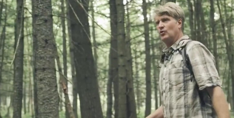Pete Nelson, celebrity treehouse builder